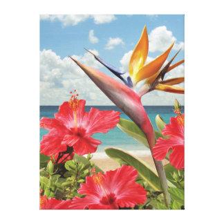 Impressão das canvas no paraíso de Alan Giana