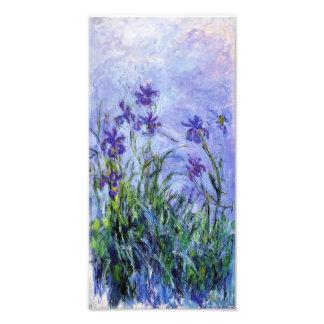 Impressão das íris do Lilac de Monet Arte De Fotos