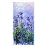 Impressão das íris do Lilac de Monet Impressão De Foto
