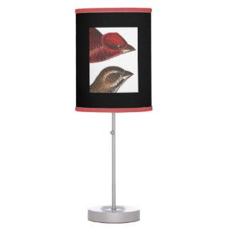 Impressão de Audubon da lâmpada nova de Hamphire