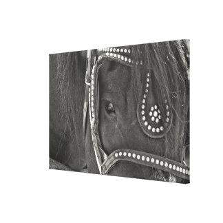Impressão DE COURO das canvas do PRETO 24 x 16