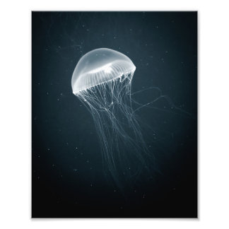 Impressão de incandescência da foto das medusa |