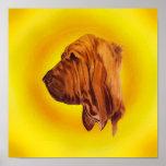 Impressão do Bloodhound