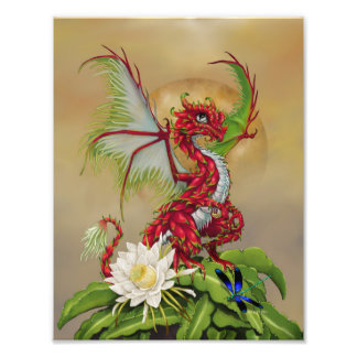Impressão do dragão 8.5x11 da fruta do dragão foto