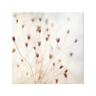 Impressão Em Canvas A guloseima secada delicada planta a chave alta