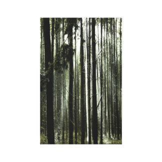 Impressão Em Canvas À margem de bosque