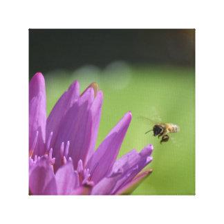 Impressão Em Canvas Abelha do mel do vôo
