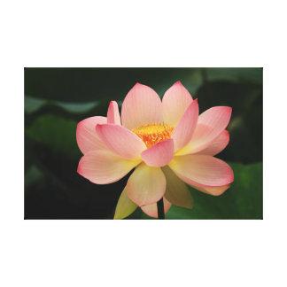 Impressão Em Canvas Abrandamento verde cor-de-rosa floral de Lotus do