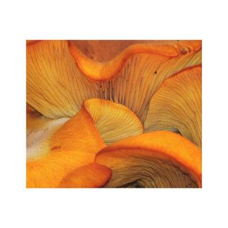 Impressão Em Canvas Abstrato alaranjado do cogumelo