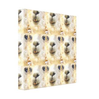 Impressão Em Canvas Alpaca überall