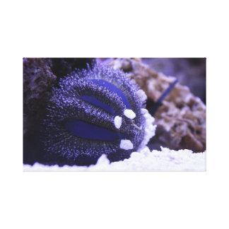 Impressão Em Canvas Arte #2 do recife
