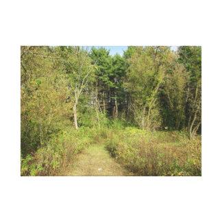 Impressão Em Canvas Arte da parede da foto da natureza das madeiras e