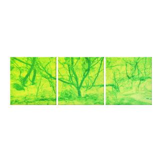 Impressão Em Canvas Árvore do por do sol do limão do verde da arte