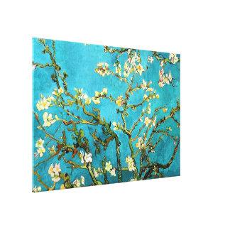 Impressão Em Canvas Belas artes de florescência da árvore de amêndoa