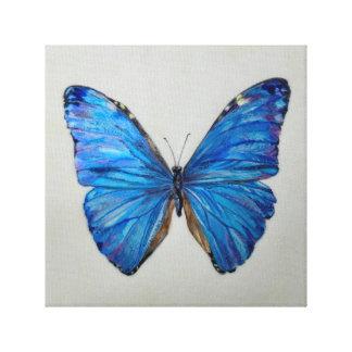 Impressão Em Canvas Borboleta azul de Morpho