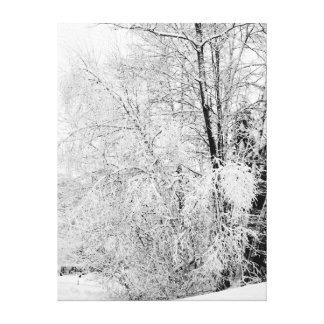 Impressão Em Canvas Brancos do inverno