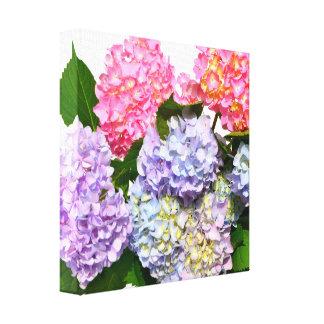 Impressão Em Canvas Buquê do Hydrangea