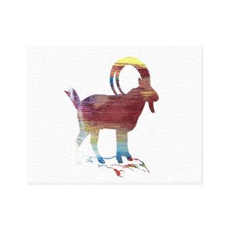 Impressão Em Canvas Cabra selvagem