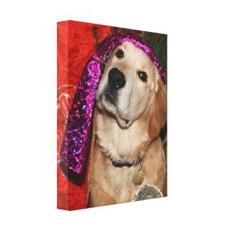 Impressão Em Canvas Caixa de fortuna do golden retriever