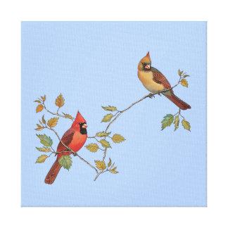 Impressão Em Canvas Casal cardinal