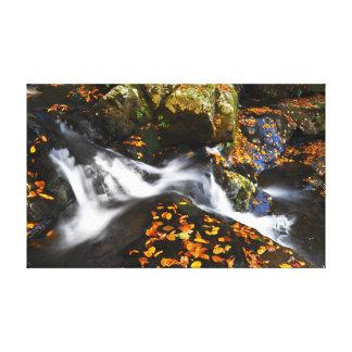 Impressão Em Canvas Cascata no outono