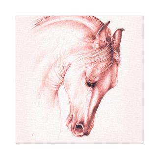 Impressão Em Canvas Cavalo andaluz bonito