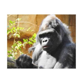 Impressão Em Canvas Coleção animal - gorila focalizado