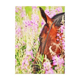 Impressão Em Canvas coleção do cavalo. primavera