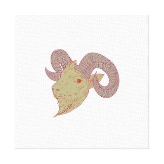 Impressão Em Canvas Desenho da cabeça da ram da cabra de montanha