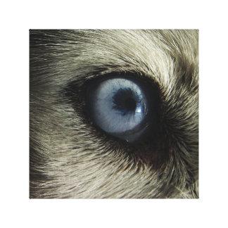Impressão Em Canvas Design ronco da foto do olho  