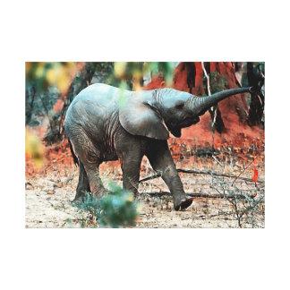 Impressão Em Canvas Elefante do bebê