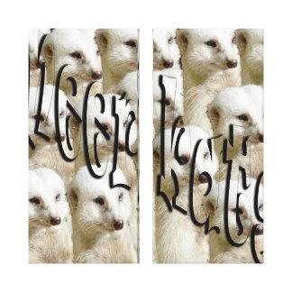 Impressão Em Canvas Exército branco de Meerkat,
