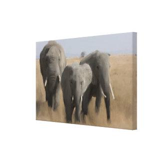 Impressão Em Canvas Família dos elefantes