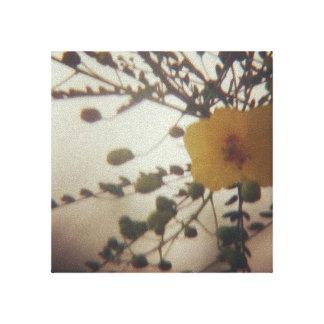 Impressão Em Canvas Flor amarela em uma tempestade da poeira