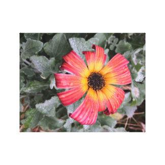Impressão Em Canvas Flor colorida fogo