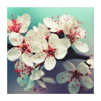 Impressão Em Canvas Flor de cerejeira cor-de-rosa, Cherryblossom,