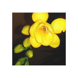 Impressão Em Canvas Flor e botão amarelos do Freesia