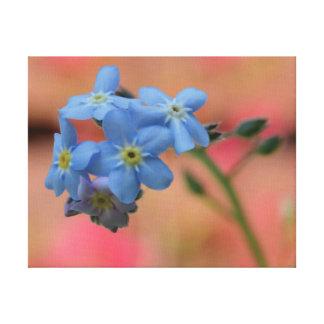Impressão Em Canvas Flores bonitas do azul da foto do fim-acima