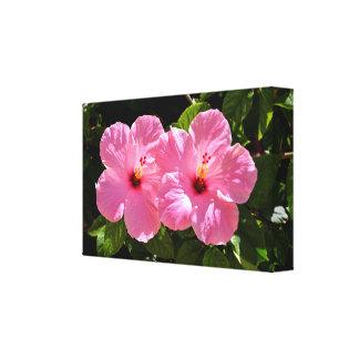 Impressão Em Canvas Flores cor-de-rosa vibrantes do hibiscus
