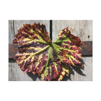Impressão Em Canvas Folha outonal da uva na madeira