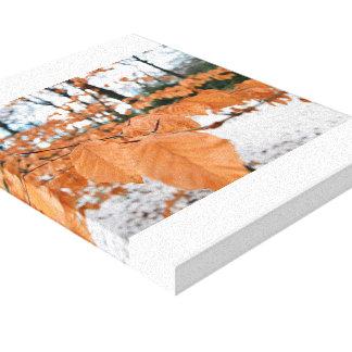 Impressão Em Canvas Folhas do inverno