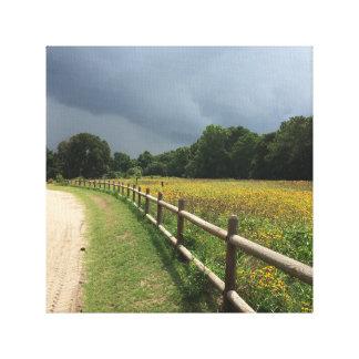 Impressão Em Canvas Foto do prado & da tempestade