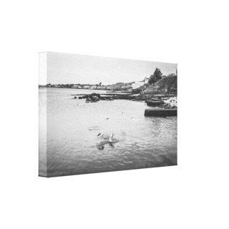 Impressão Em Canvas Gaivotas que voam sobre o oceano
