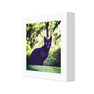 Impressão Em Canvas Gato preto de Тhe