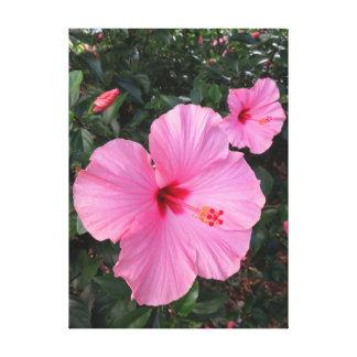Impressão Em Canvas Hibiscus