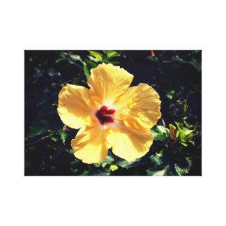 Impressão Em Canvas Hibiscus amarelo