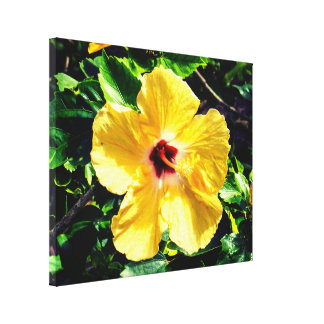 Impressão Em Canvas Hibiscus exótico bonito de Yellow&Red