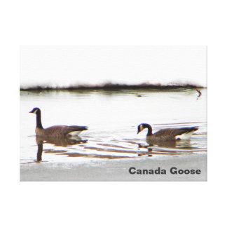 Impressão Em Canvas Honkers - gansos de Canadá