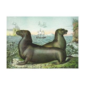 Impressão Em Canvas Ilustração marinha 18X13 dos leões de mar do
