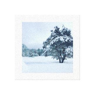 Impressão Em Canvas Inverno de Maine